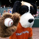 Lancaster Barnstormers invite dogs (and That Pet Place) to the ballgame!