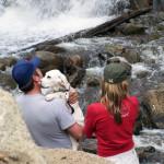 Pet Friendly Destinations in Lancaster, PA