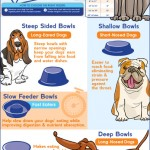 Choosing the Right Dog Bowl for Your Dog