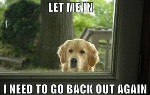 Let me in, I need to go back out again