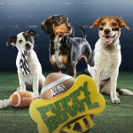 Puppy Bowl XII:  Everything You Need to Know About Sunday's Big Game