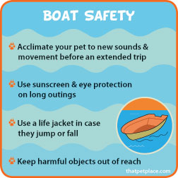 boatsafety