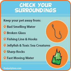 checksurroundings