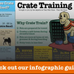 3 Simple Steps to Crate Train Your Dog