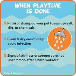 playtimedone