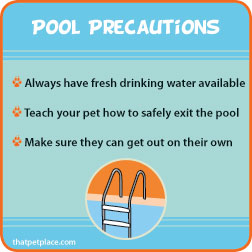 poolprecautions