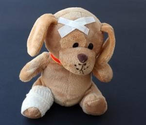 teddy-242851_640